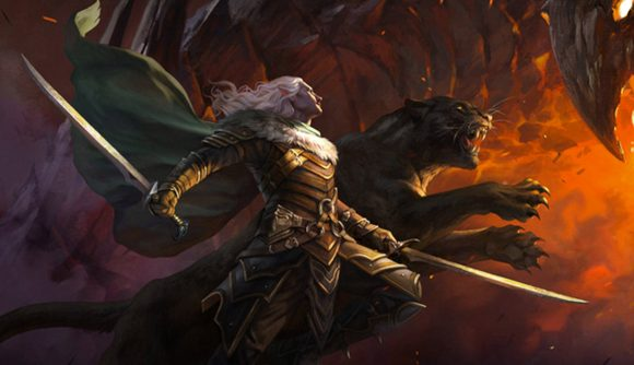 Characters from Magic: The Gathering and D&D fighting