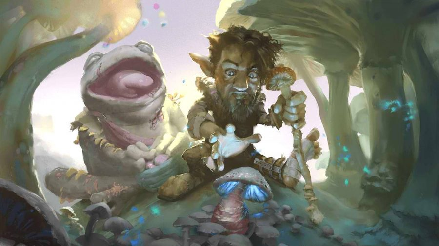 D&D The Wild Beyond the Witchlight a gnome crouched over a mushroom with a frog behind him